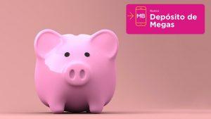 deposito-megas